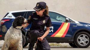 policia-nacional-